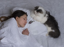 Cat brought prey to his mistress Stock Image