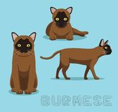 Cat Burmese Cat Cartoon Vector Illustration. Animal Character EPS10 File Format Royalty Free Stock Photos