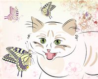 Cat and butterflies Stock Photos