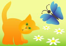 A cat and a butterfly Stock Photo