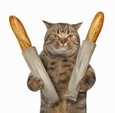 Cat buyer with french bread. The cat buyer holds two loaves of french bread. White background stock images
