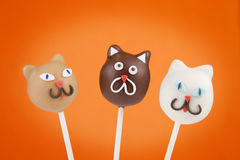 Cat cake pops Stock Images