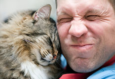 Cat care with man stock photos