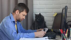 The cat carefully watches how the young man works remotely at home