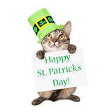 Cat Carrying St Patricks Day Sign. A cute brown and black striped cat wearing a festive green hat while holding up a sign with the words Happy St. Patrick's Day Stock Photography