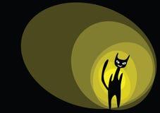 Cat cartoon Stock Images