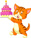 Cat cartoon with birthday cake Stock Photography