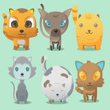 Cat Cartoon Cute Collaction Set Vector Royalty Free Stock Images