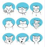 Cat Cartoon Faces Imagen de archivo