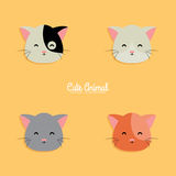 Cat cartoon faces Royalty Free Stock Images