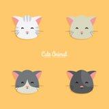Cat cartoon faces Stock Photos