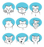Cat Cartoon Faces Stock Image