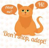 Cat in a cartoon style. Do not shop, adopt. Cat adoption concept. Vector illustration stock illustration