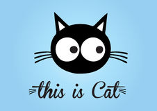 This is cat, cat vector, cute cat colorful. blue background Stock Photos