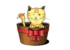 Cat catoon. A cat in a bucket on white background Stock Photo
