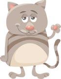 Cat character cartoon illustration Stock Image