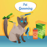 Cat character in groom salon Royalty Free Stock Photos