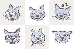 Cat characters. Different emotions. Smiles cats icon set sequel. Vector illustration Stock Images