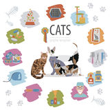 Cat characters and vet care icon set flat style Royalty Free Stock Photo