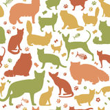 Cat characters and vet care seamless pattern flat style. Vector illustration Stock Images