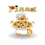 Cat chef cook and pizza Royalty Free Stock Photos