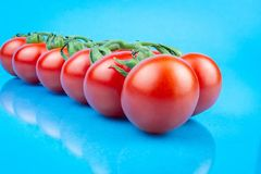 Cherry tomatoes on blue background royalty free stock photography