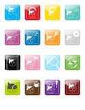Cat Chiclets Royalty Free Stock Images