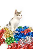 Cat and Christmas bows. A cat sits amongst a pile of colorful Christmas bows on a white background Stock Images