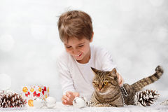 Cat with Christmas decorations Stock Photography