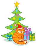 Cat and  christmas tree Stock Photos