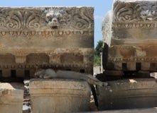 Cat at city Ephesus Stock Images