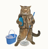 Cat cleaner 1 Royalty Free Stock Photography