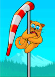 Cat climbed windsock. Red cat climbed on a windsock. The cat is on the high altitude. Cat terribly, he clung to the mast and rolled his eyes. In the background Royalty Free Stock Photos