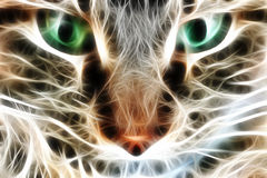 Cat closeup rendered with light streaks or electri Stock Photo