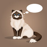 Cat with a cloud of thoughts. Vector Illustration Stock Image