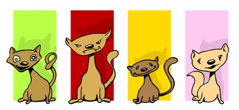 Cat collection. A cute collection of four different illustrated cats with different colored backgrounds Royalty Free Stock Photo