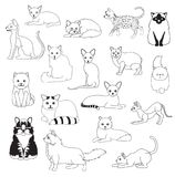 Cat Coloring Book Cartoon Cute-de Vastgestelde Vectorillustratie van het Karaktersbeeldverhaal vector illustratie