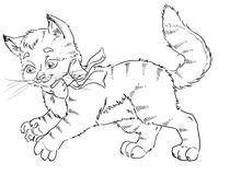 Cat coloring page Stock Image