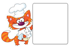 Cat the cook and blank Royalty Free Stock Photos