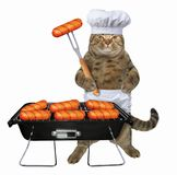 Cat cooks sausages on grill royalty free stock photography