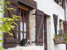 Cat in the country. Old-style house in a country with a cat on a window Royalty Free Stock Photos