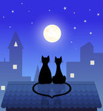 Cat couple Stock Photography
