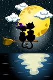 Cat Couple Love Broom Moon Sea Royalty Free Stock Photos
