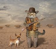 Cat cowboy with dog 1. The cat cowboy with a real rifle guards a herd of cows. His dog is next to him royalty free stock image