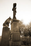 Cat and cross. Cat sitting at the stone cross of thanksgiving at sunrise ( sepia with nois typical for old photo Stock Photos