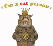 Cat with a crown and a locket stock images