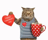 Cat with coffee and a heart Stock Photo