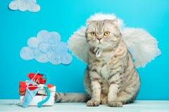 Cat Cupid, leuke engel met boog en pijlen, Concept de Dag van Valentine, met ruimte voor een inschrijving of een ontwerp stock afbeelding