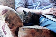 Cat Curled Up en una butaca al lado de adolescente en el ordenador Imagen de archivo libre de regalías