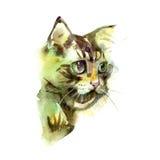 cat cute η διακοσμητική εικόνα απεικόνισης πετάγματος ραμφών το κομμάτι εγγράφου της καταπίνει το watercolor Τυπωμένη ύλη μπλουζώ Στοκ εικόνες με δικαίωμα ελεύθερης χρήσης